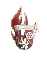 Ehrennadel JF-RLP